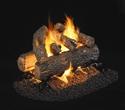 Picture of Golden Oak Designer Plus See Thru Vented Log Set